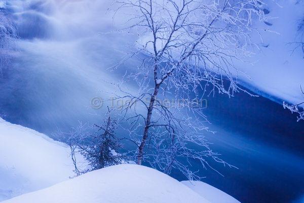 Зимняя Лапландия 2