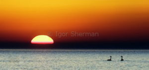 Восход на Ладоге